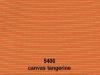 canvas-tangerine-5406